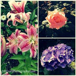 free_online_photo_editing