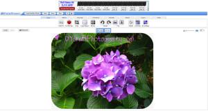 free_online_photo_editing_fotoflexer