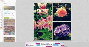 free_online_photo_editing_picmonkey