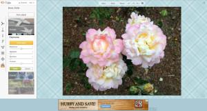 free_online_photo_editing_picmonkey_adjust_sliders