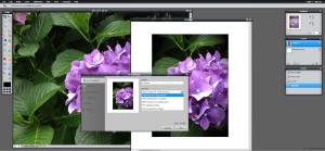 free_online_photo_editing_pixlr_1