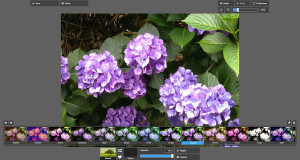 free_photo_editing_online_pixlr_express_filters2