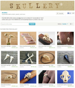 Etsy Shops with Great Photos Skullery