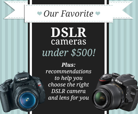DIYCraftPhotography's guide to the Best DSLR Cameras under $500!