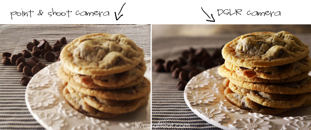 Point and shoot vs. DSLR from Katie at LiveCraftEat